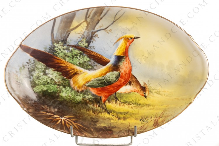 Oval dish in Limoges china decorated with a pheasants couple in a clearing, hand painted by C