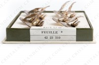 Set of eight menu holders in platted silver by Christofle pettern Feuille representing a vine leaf photo-6